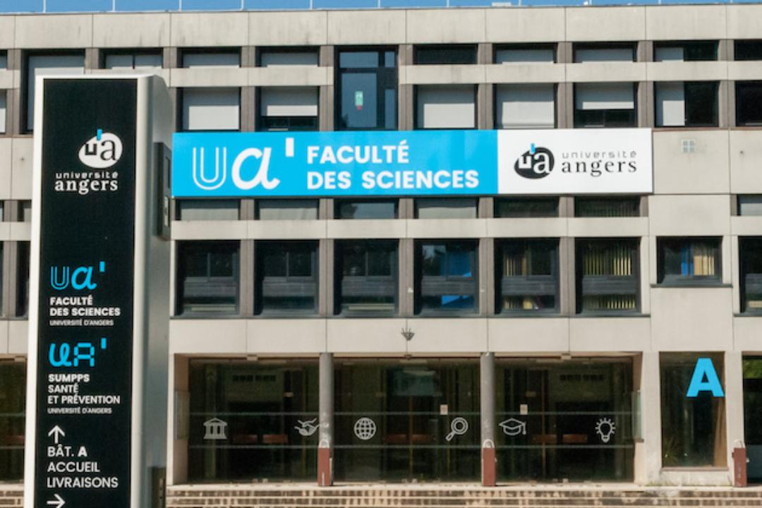 Dépistage Covid - Université d'Angers